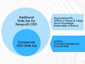 Nonprofit CEO recruitment Skills Set